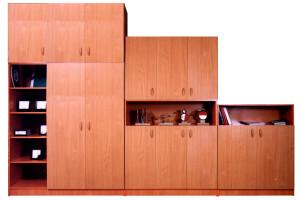 Шкафы для учебно-наглядных пособий.
